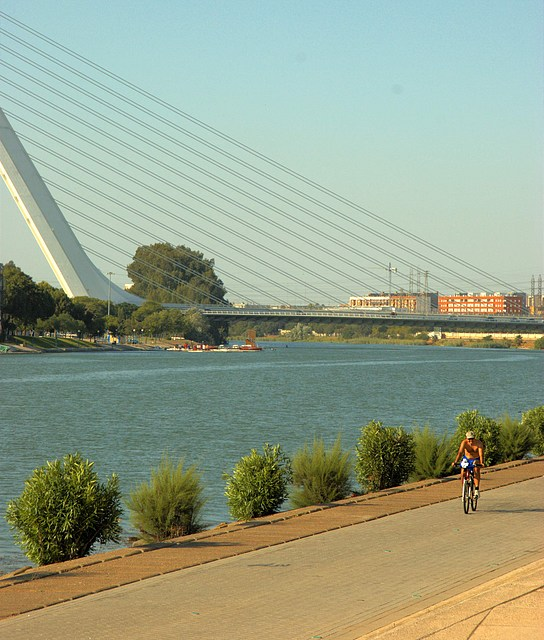 Cyclist in front of the Puente del Alamillo