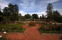 The Rose Garden at Colonial Park